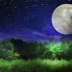 月の神様に会いにいこう!女性なら訪れたい月讀神社@川崎